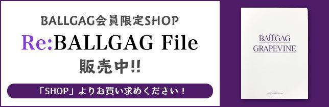 Ballgag_file02_0420